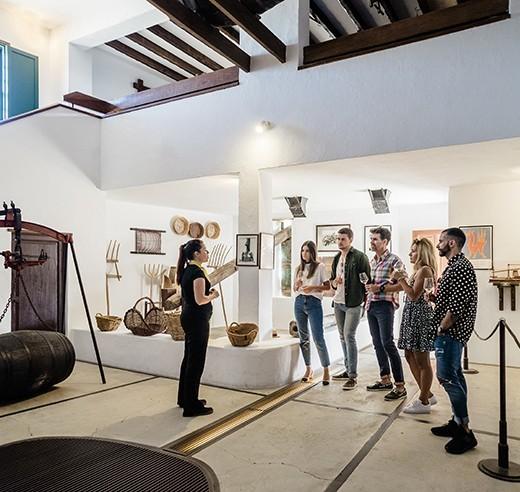 Visita Guiada al Museo del Vino